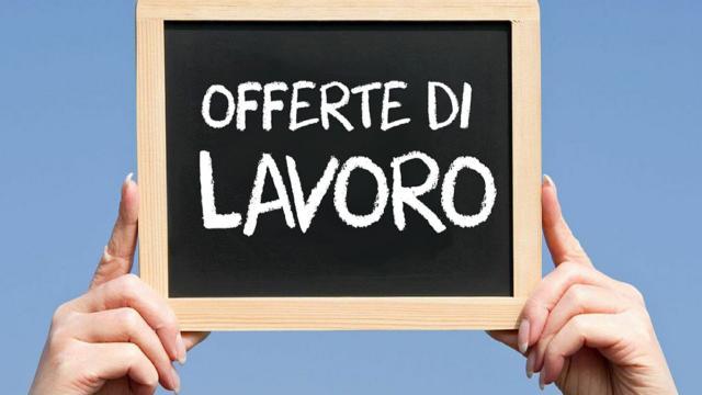 Offerte di lavoro Trenitalia: in Puglia si cercano specialisti in Gare e Appalti