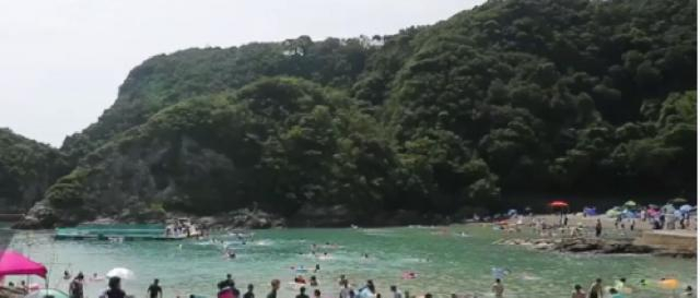 Japan: Tourists in the notorious Taiji cove play with dolphins ahead of annual hunt. [Image source/Ruptly YouTube video]