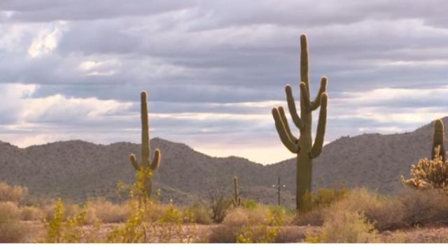 US-Mexico border wall poses severe environmental threat. [Image source/Al Jazeera English YouTube video]