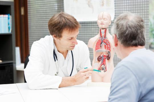 Como prevenir o câncer de próstata? 8 perguntas e respostas sobre ... - com.br