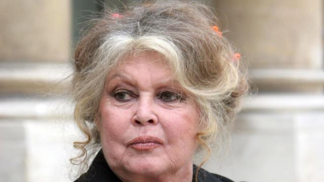 Brigitte Bardot tweete sur les attentats et déclenche une ... - voici.fr