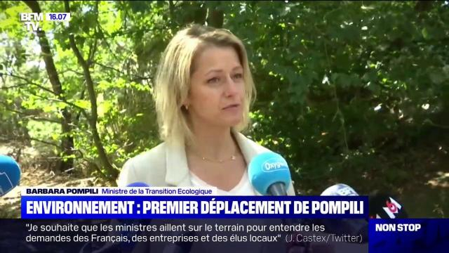 Barbara Pompili (ministre de la Transition écologique):