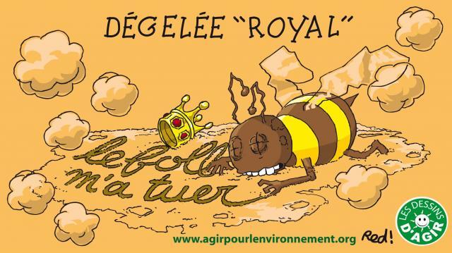 Face aux risques pour les humains et les insectes, le gouvernement de François Hollande a Interdit les insecticides néonicotinoïdes en 2016