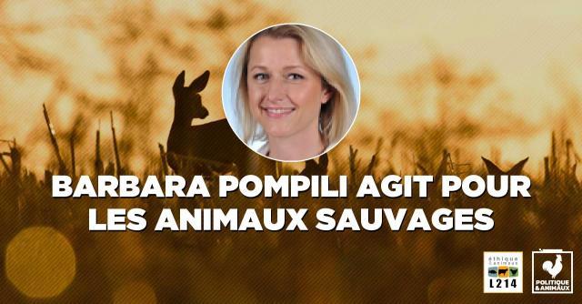 Le site internet de la ministre Barbara Pompili : les néonicotinoïdes vont exterminer des milliards d'insectes utilesue-animaux.fr