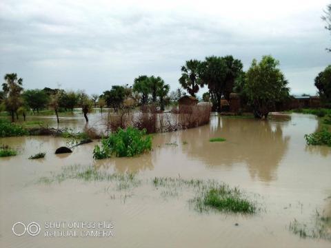 Des champs complètements engloutis par les eaux (c) Adolarc Lamissia