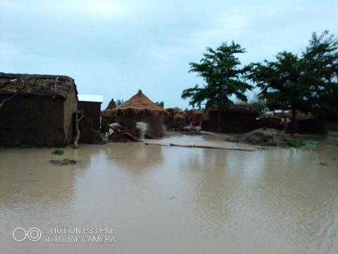L'arrondissement du Mayo-Danay en proie à des inondations en ce mois d'août 2020 (c) Adolarc Lamissia