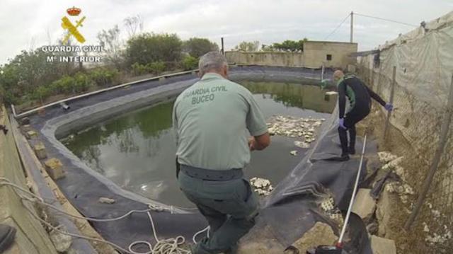 La Guardia Civil trabaja en una balsa de riego del tipo de la que fue encontrada la niña de El Ejido.