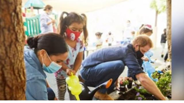 Prince Harry and Meghan Markle plant forget-me-nots, favorite flower of his late mother Princess Diana. [Image Source: Access YouTube]