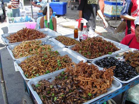 Consommation d'insectes: Pourquoi pas un souper de grillons.... ou ... - cinqfourchettes.com