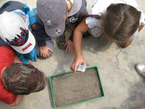 Educazione ambientale: