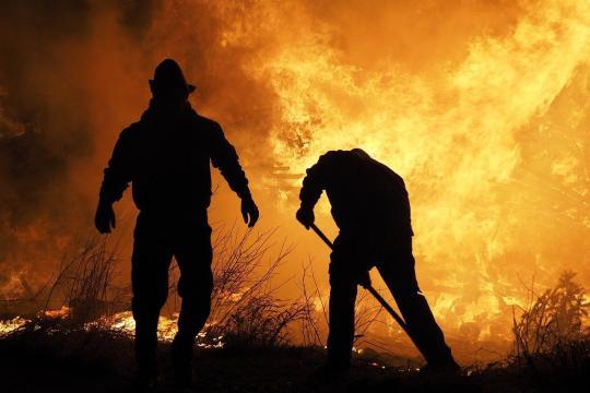 El incendio declarado en la provincia de Ávila ya ha calcinado más de 12.000 hectáreas (Pixabay)