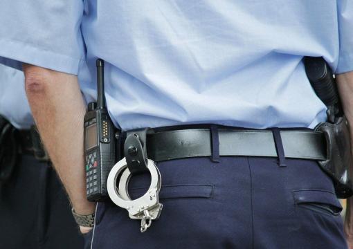 La Policía Local del municipio almeriense de Pulpí detuvo al joven de 27 años (Pixabay)